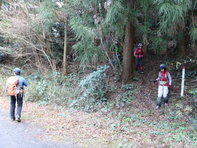 IMG6551JPG貫山林道に下りてきた
