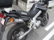 RIMG0546x.jpg