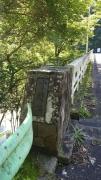 奥多摩渓流トレイル4