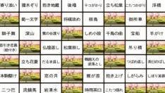 weekly_1507730383_43704.jpg