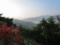益山から大邱への車窓