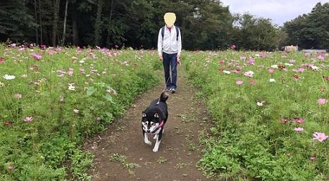 2017-10那須旅-1