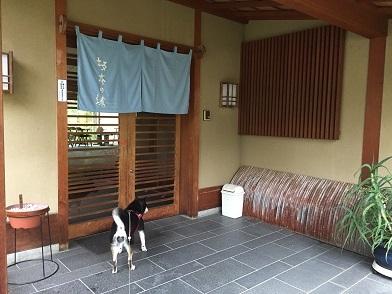 2017-8坂本の湯