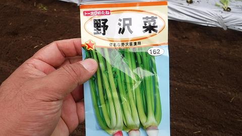 2017.10.1菜園11