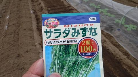 2017.10.1菜園②4