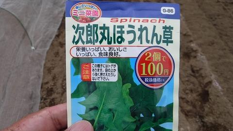 2017.10.1菜園②6