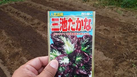 2017.10.14菜園21