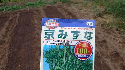 2017.10.14菜園25