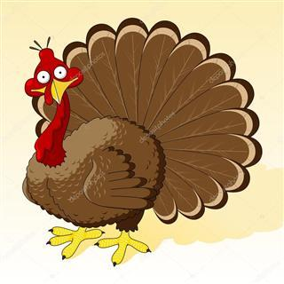 depositphotos_4879705-stock-illustration-thanksgiving-turkey (Custom)