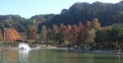 にぎわう秋川湖