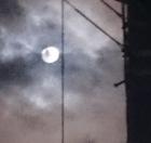中秋の名月3
