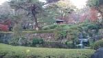 大宮公園内池