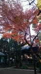 妙福寺入口