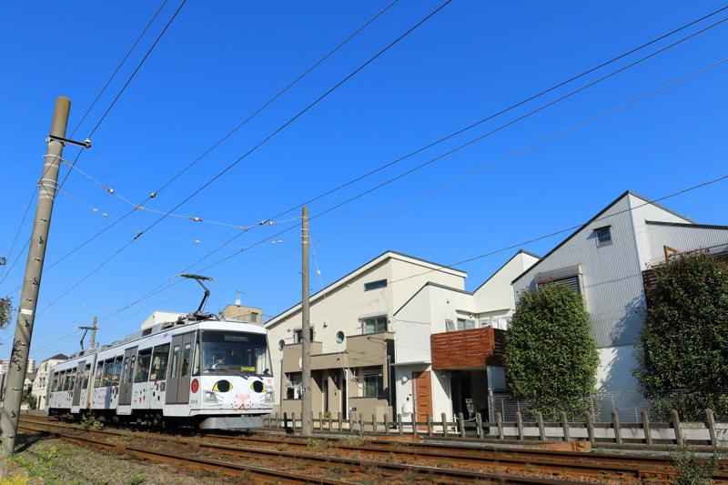 ATSU4147b-1.jpg