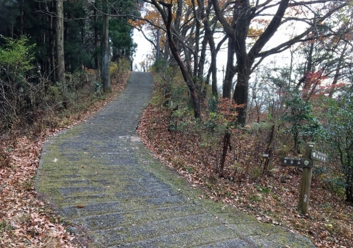 1201_blog (2)