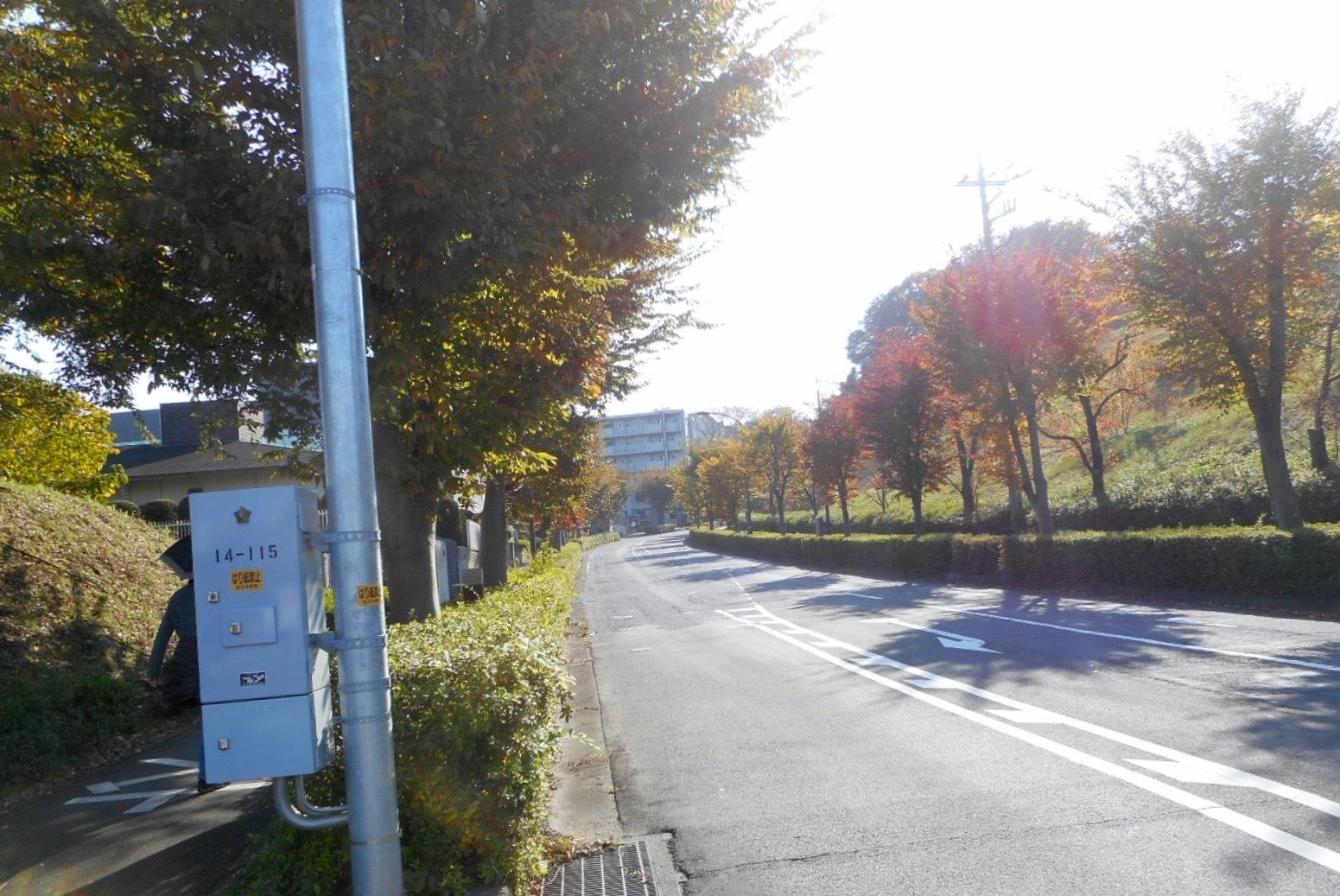 2017_11_5_hakamairi5240.jpg