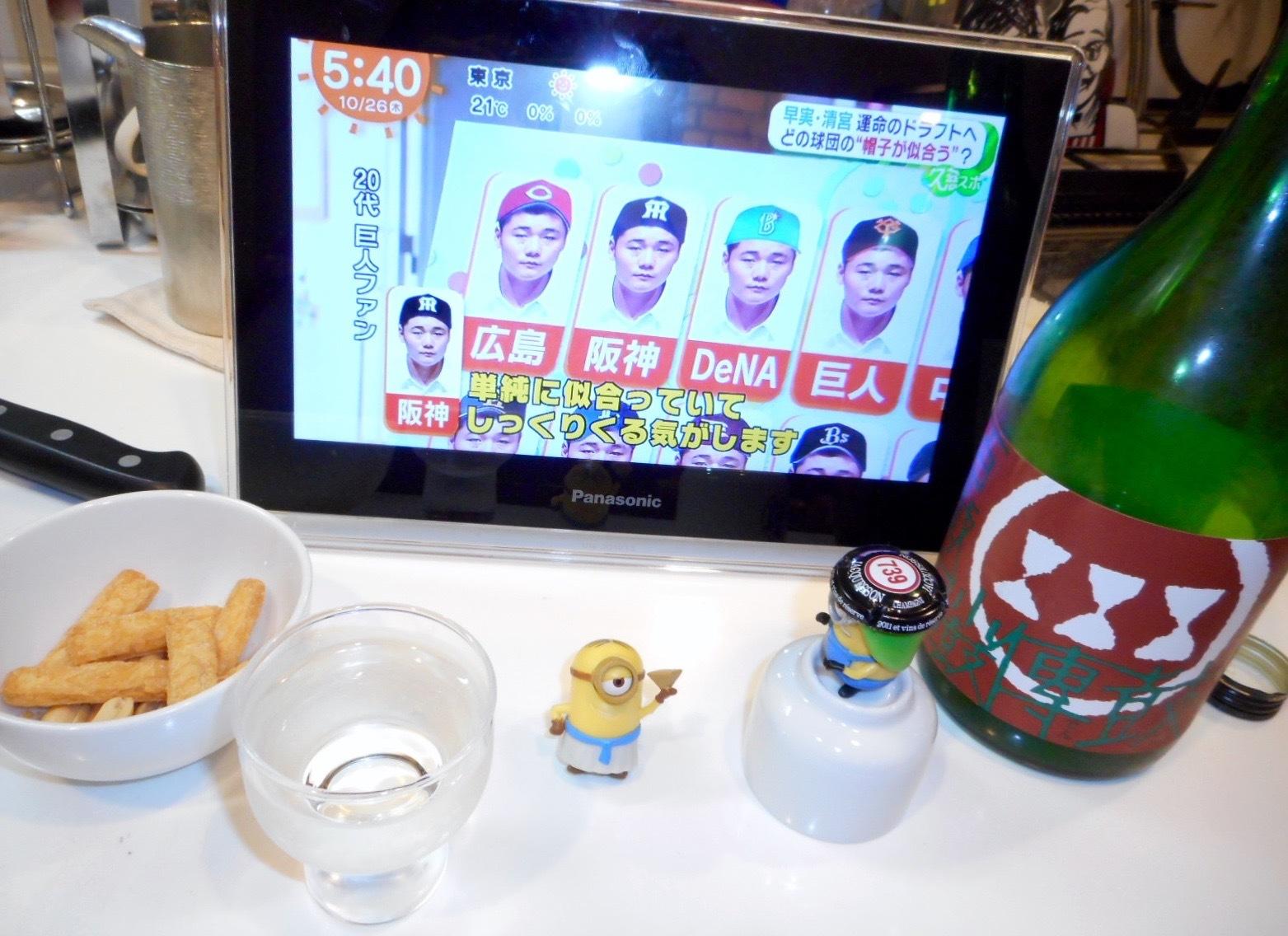kozutsumi_koden28by11.jpg