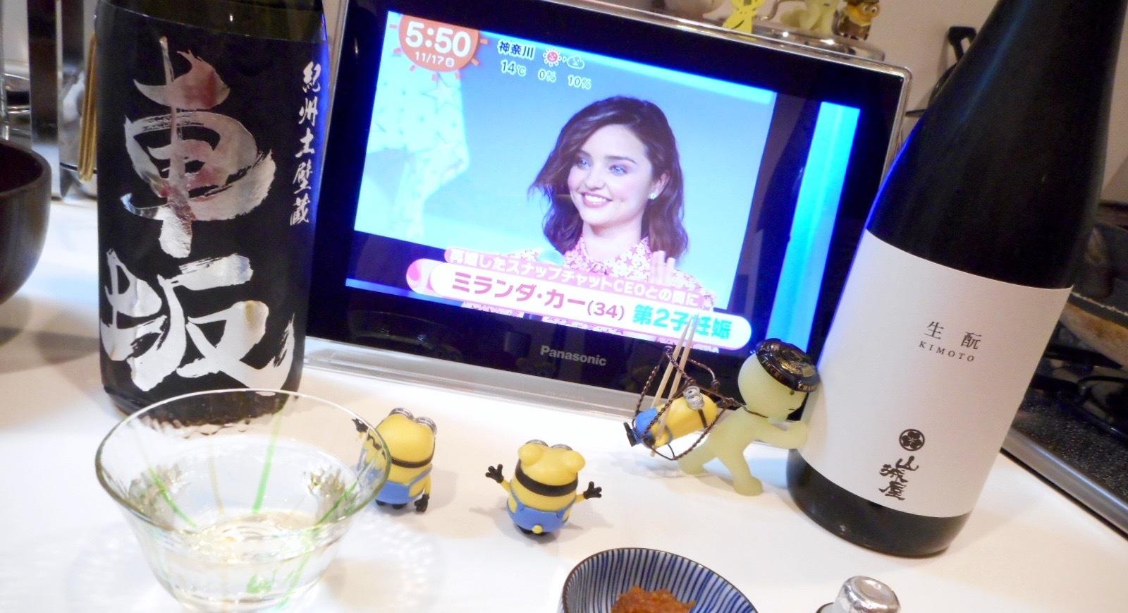 yamashiroya_kimoto28by4.jpg