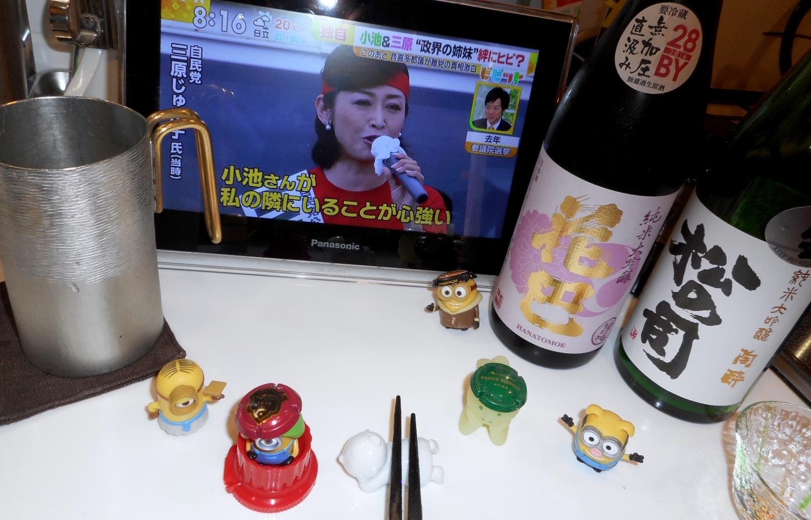 yonetsuru_yamahaijundai28by2_9.jpg