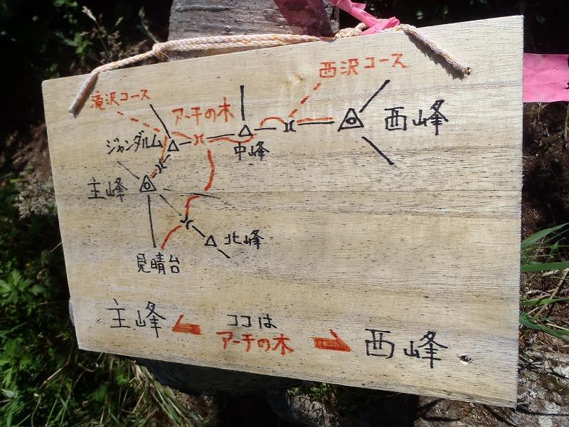 恵庭アーチの木の案内板