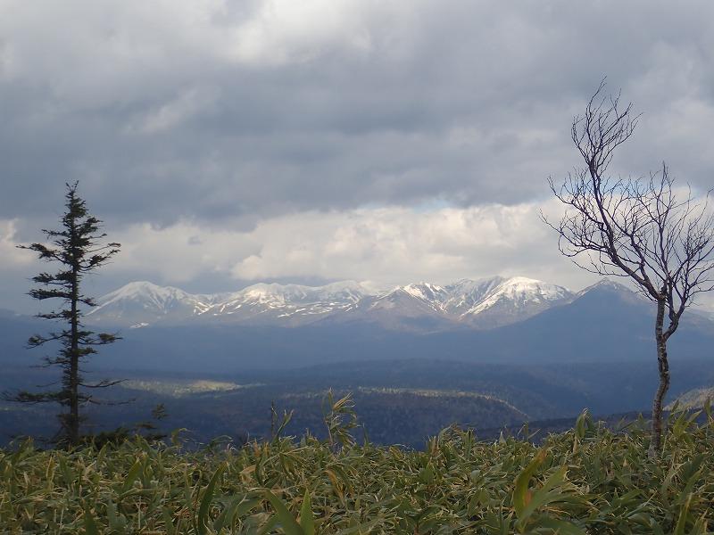 山頂からの十勝岳連峰