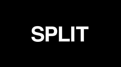split01.jpg
