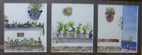 スペイン盆栽