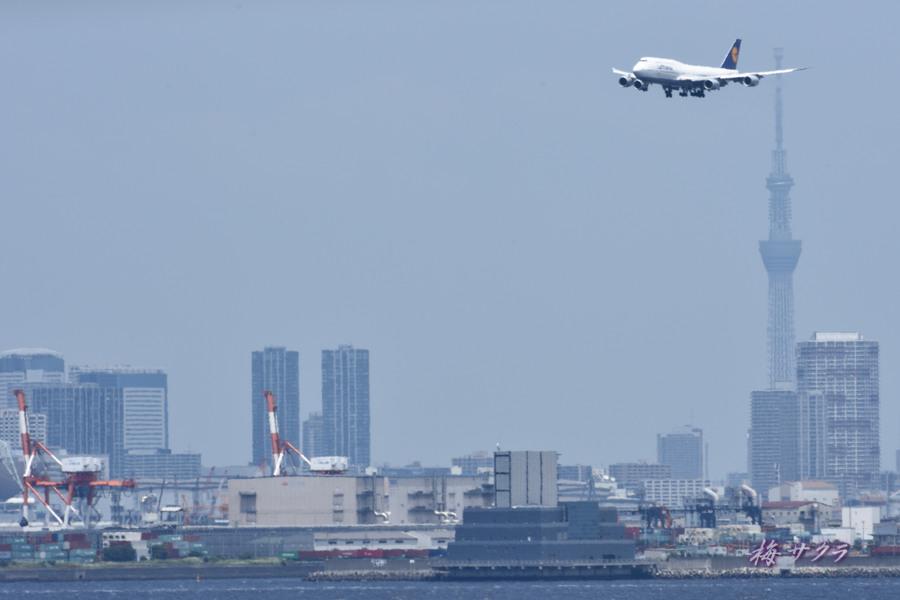 羽田空港8変更済