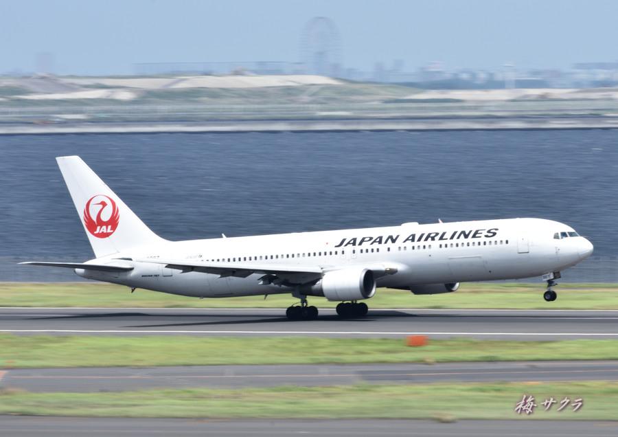 羽田空港12変更済