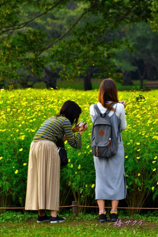昭和記念公園12変更済