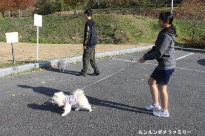 山王山公園 お散歩しましょう