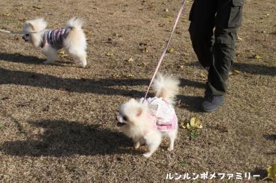 山王山公園 歩こうね