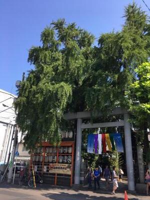 2017.9.9長生庵5