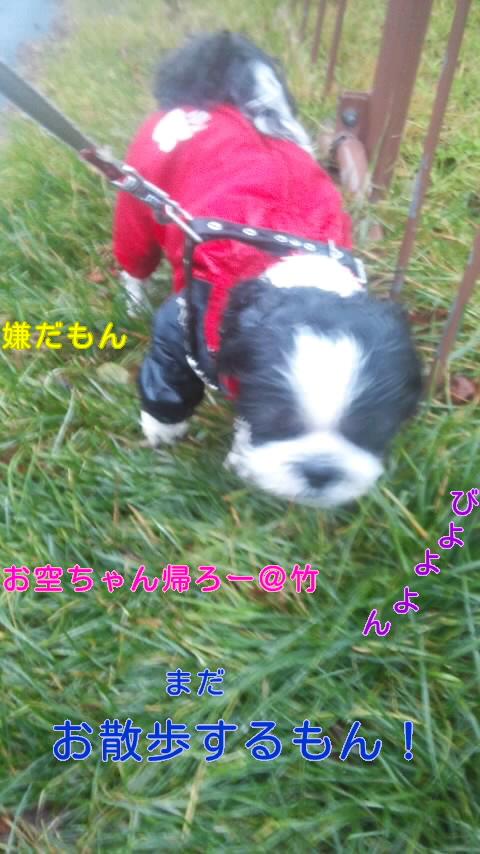 moblog_fb1adaf9.jpg