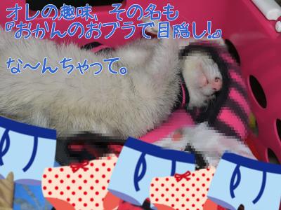 おかんのおぶらがすっき~1 (6)