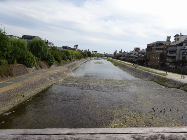 三条大橋から鴨川の眺め