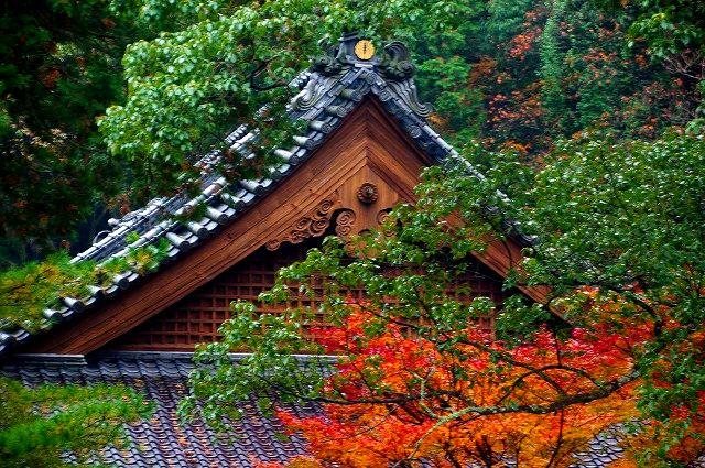 古刹 冬を迎える宝生寺