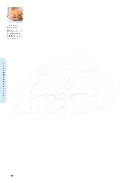 nekonazorie_sub4