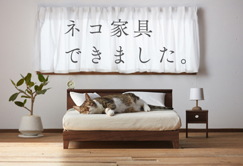 okawakagu_nekokagu2