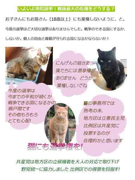 猫の応援page001