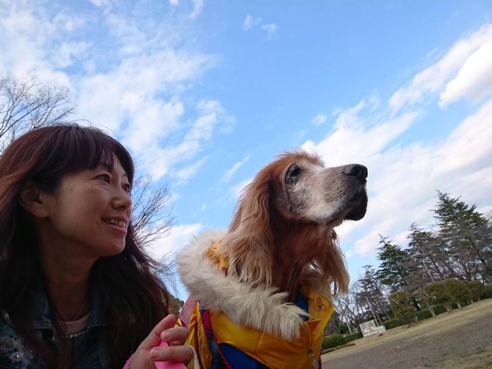 【スピリチュアルマルシェ出展者】akko
