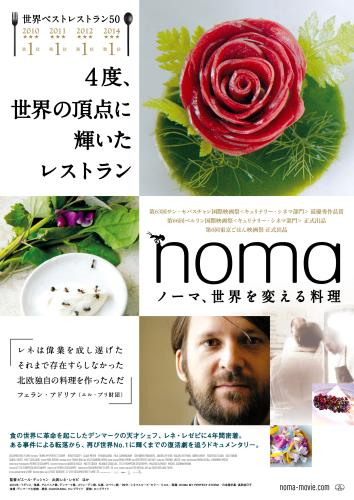 NOMA MY PERFECT STORM