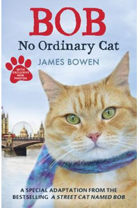Bob- No Ordinary Cat