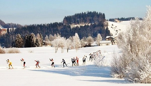 600px-Cross-country_skiing_Schwedentritt.jpg