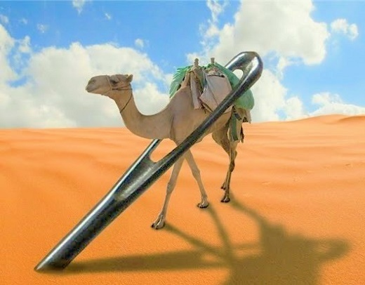 camel-through-the-eye-of-a-needle.jpg