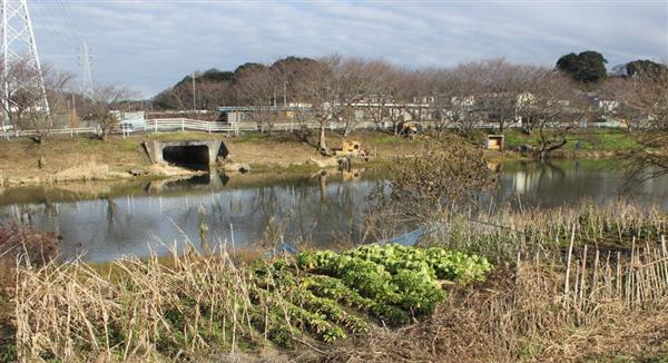 20171029 河川敷の畑