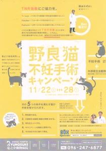 BOX竜之介 キャンペーン2017年11月