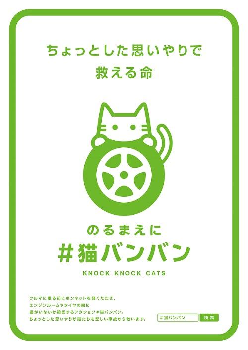 KnockKnockCats_Poster.jpg