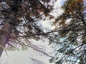 20171111_新冠町の朝