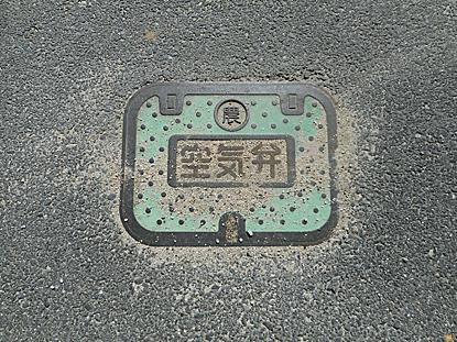 man-02.jpg